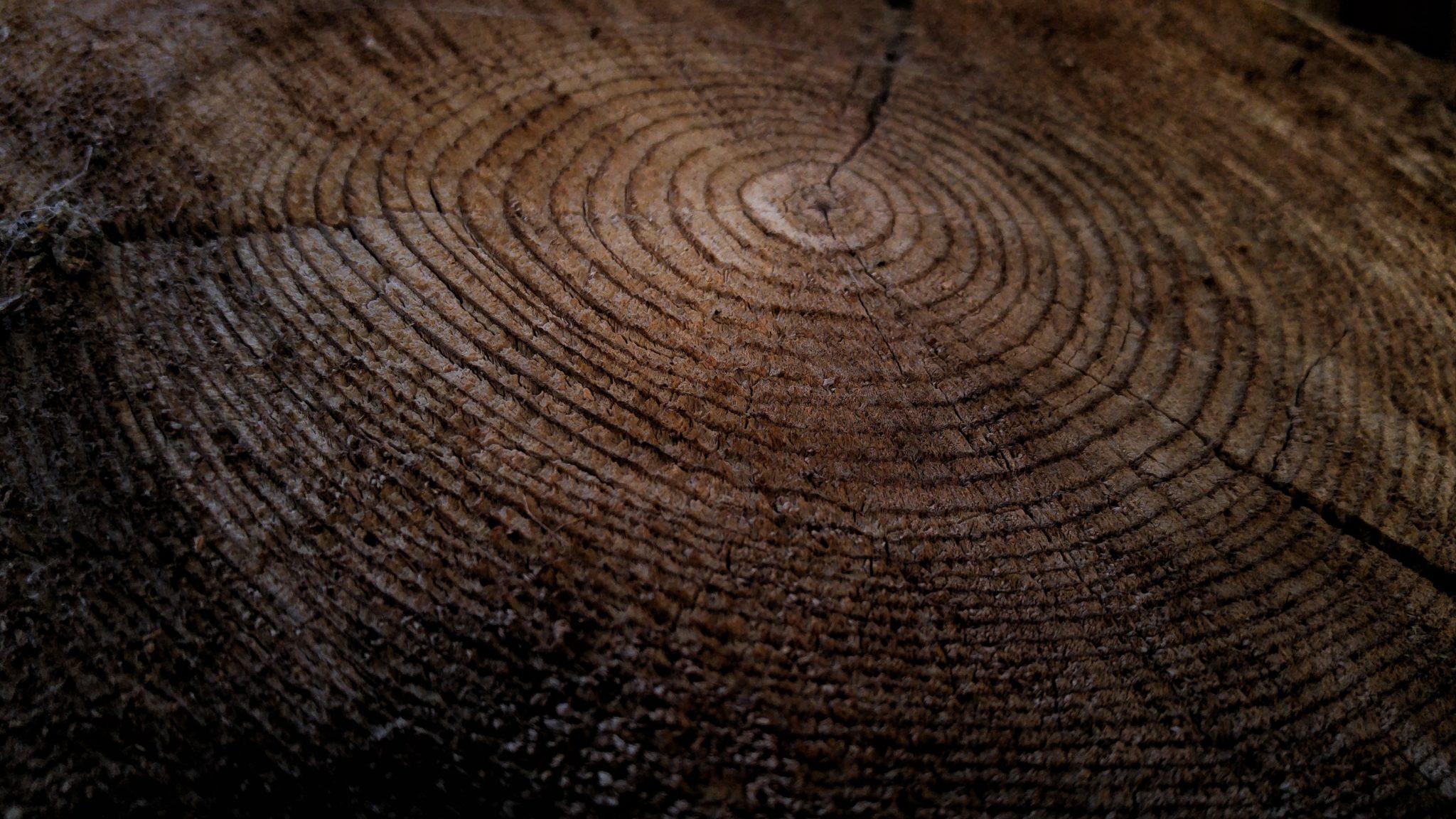 Woodgrain, Wood Background